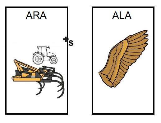 Oposciones fonológicas  r-n-l-d
